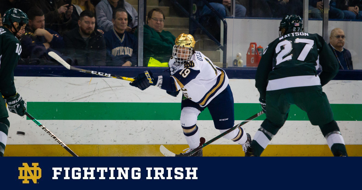Irish Host Spartans In Final Regular Season Series