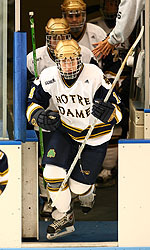 Defenseman Brock Sheahan and the Irish hit the ice for a pair of home games on Nov. 10-11 versus the Bowling Green Falcons.