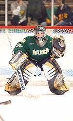 Irish goaltender David Brown has been selected as the RBI Financial Group CCHA player of the month for February.