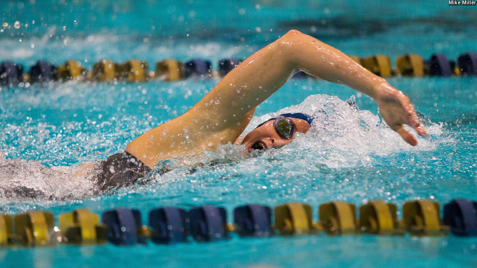 ACC Women's Swimmer of the Week Abbie Dolan