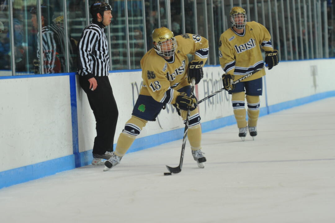 new style 02bb9 1d320 Irish Forwards T.J. Tynan And Anders Lee Named Second Team ...