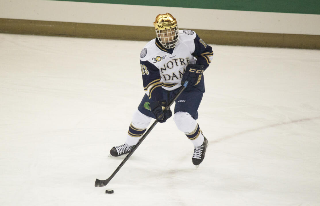 Freshman center Vince Hinostroza was named the Hockey East/Pro Ambitions rookie of the week for his play versus Minnesota.