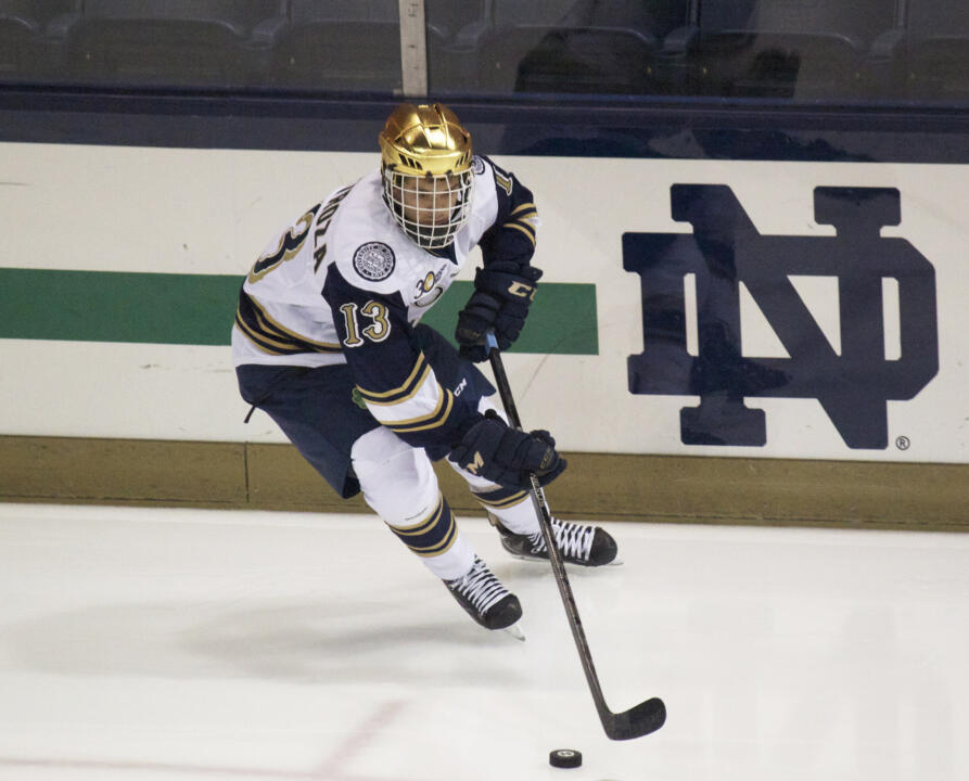 Freshman center Vince Hinostroza is among the top freshmen scorers in Hockey East and the nation in his rookie year.