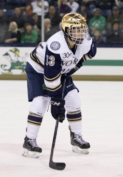 Sophomore center Vince Hinostroza is Notre Dame's top returning scorer.  He had eight goals and 24 assists for 32 points in his rookie season.