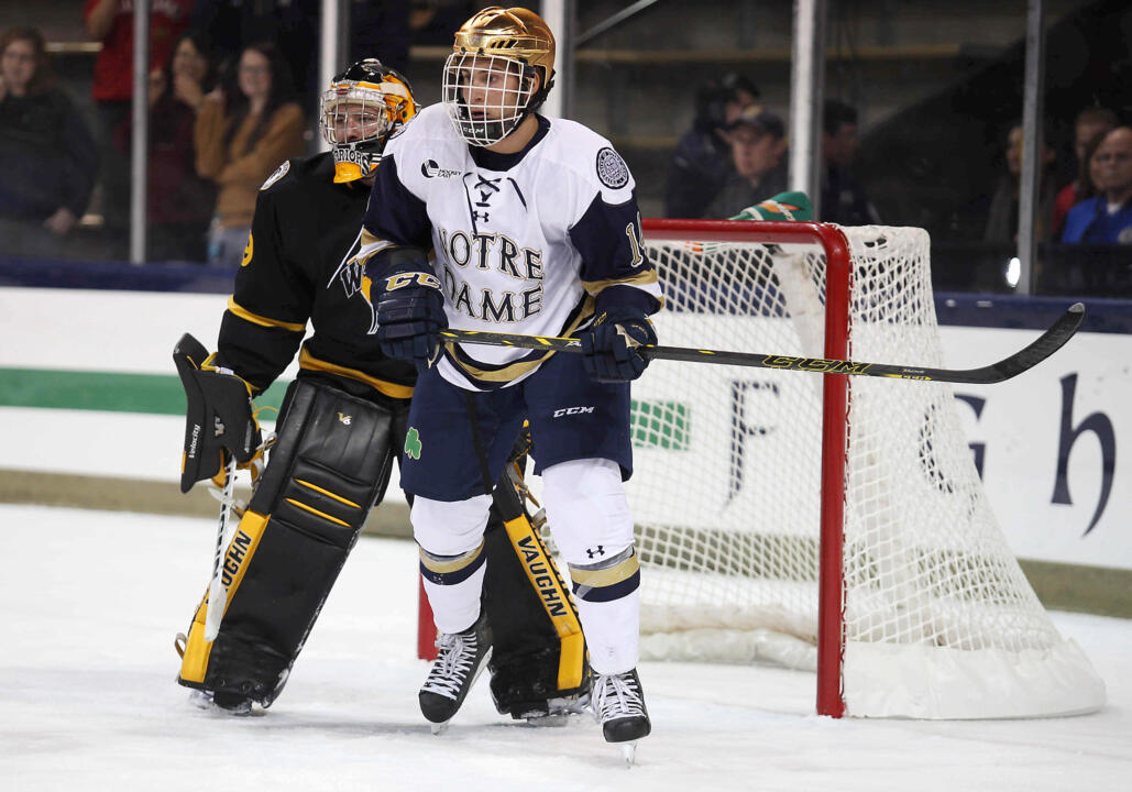 Junior left wing Thomas DiPauli provides a spark for the Notre Dame hockey team.