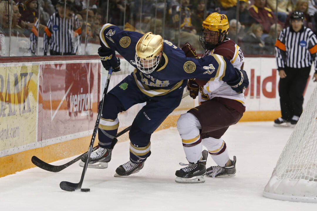 In 2014-15, Mario Lucia scored the most goals by a Notre Dame player since 2010-11.