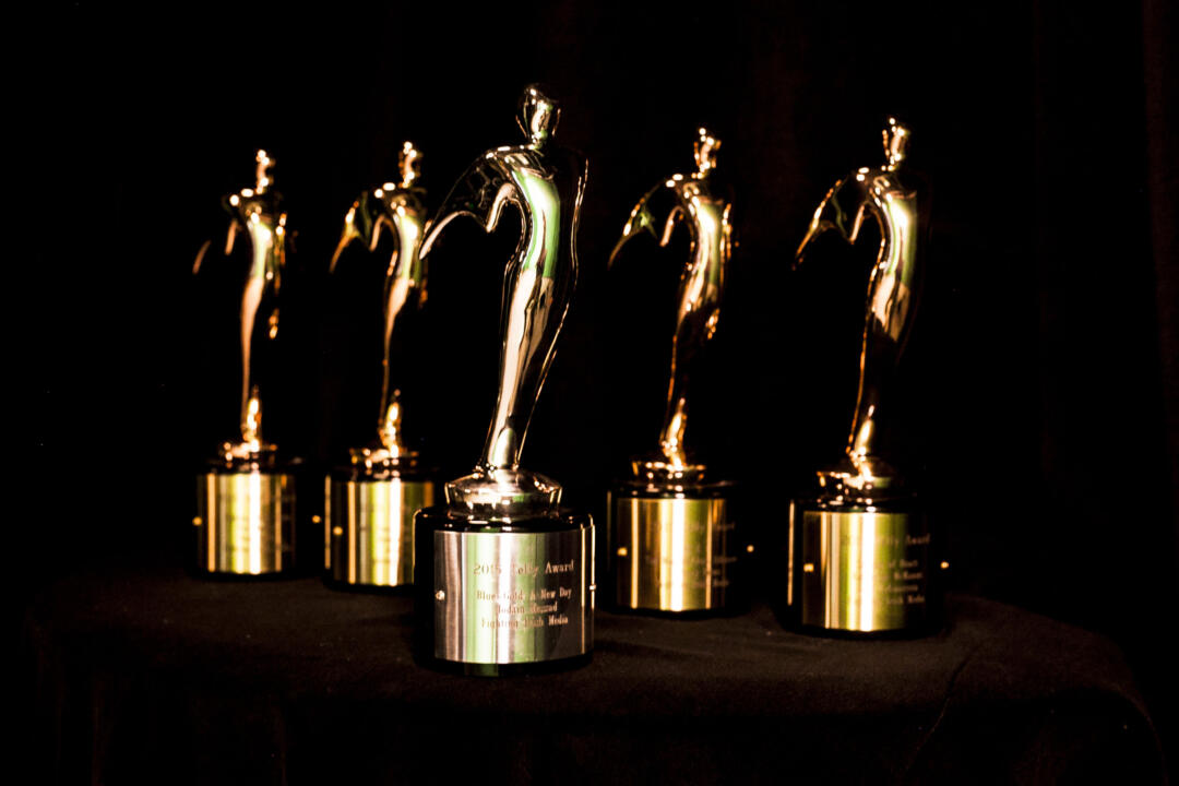 Notre Dame's Fighting Irish Media team earned five Telly Awards, including the group's first Silver Telly, for video production excellence during the 2014-15 school year.