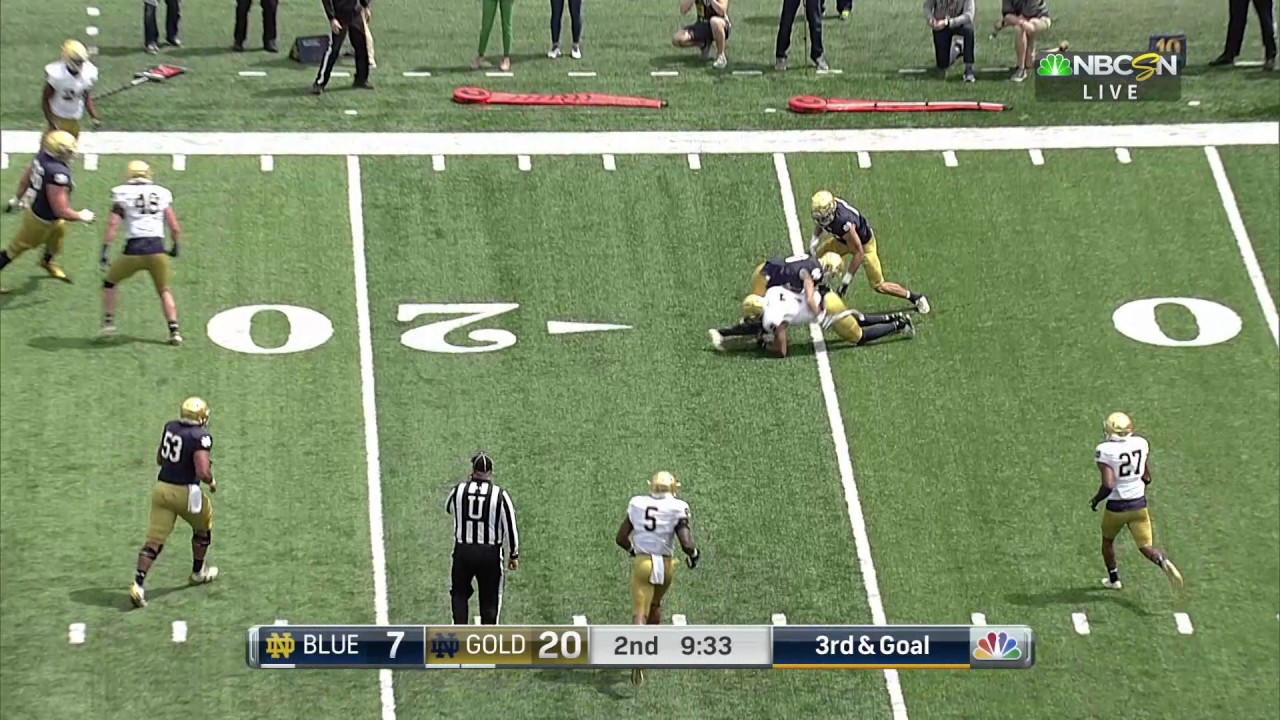 Notre Dame Football Quick Plays Watkins Interception April 22, 2017